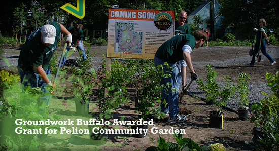 Achieving Environmental Justice at Pelion Community Garden