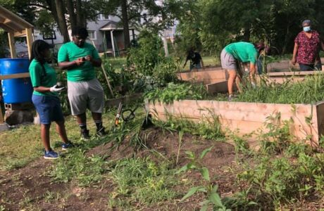 Neighborhood Cleanup With Fillmore Forward